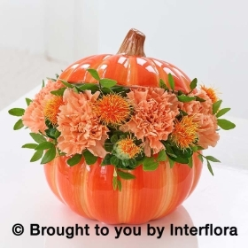 Perfect Pumpkin Ceramic